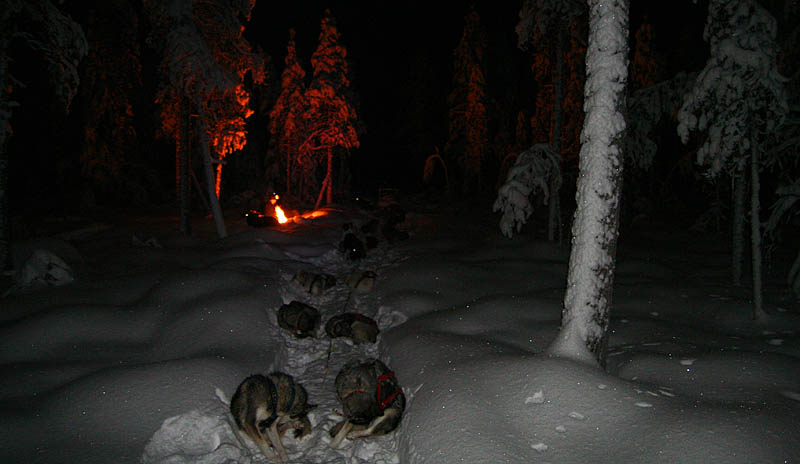 Förvintern_2006