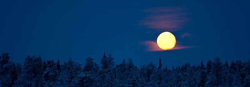 Fullmåne_guldmedalj