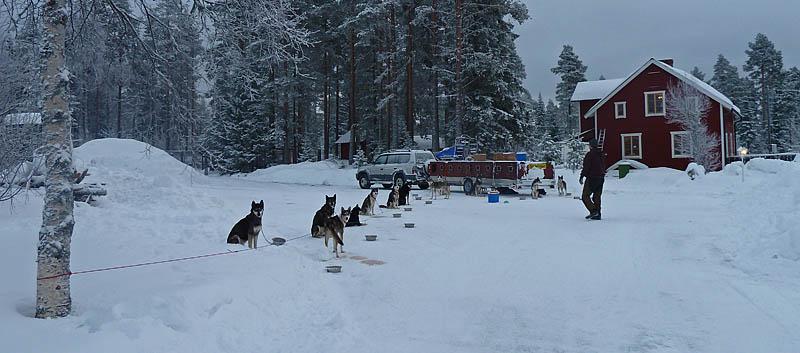 Nordic_open