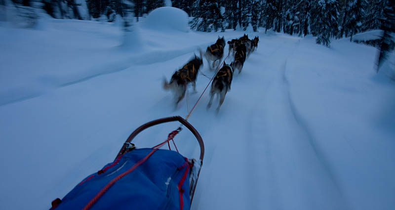 Crossing_lapland