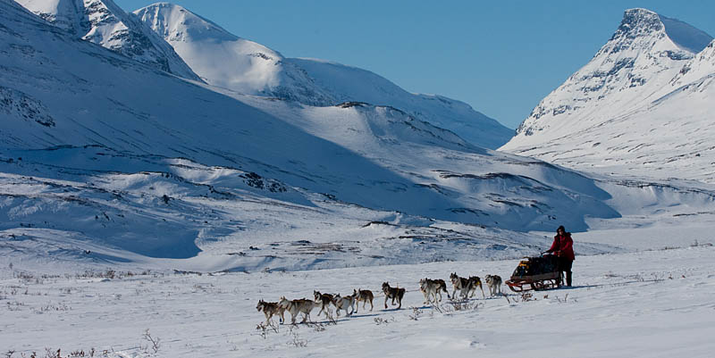 Hundspann_sarek_nationalpark