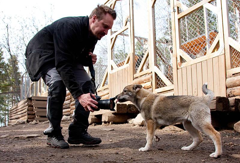 Hundfotografering_hundbok_1