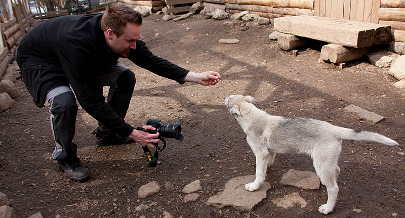 Hundfotografering_hundbok_2