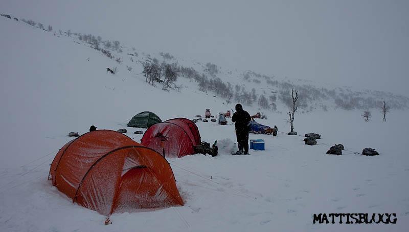 Arctic_alpine_design_wbt3_1