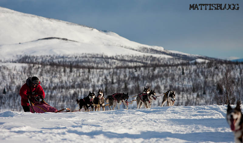 Crossing_lapland_5