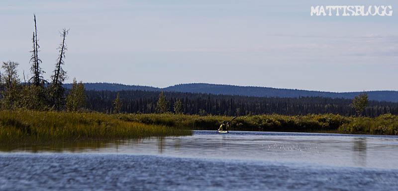 Luleälvsboken-paddling_4
