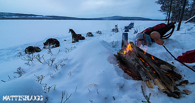 Hundspann_decemberturer_1