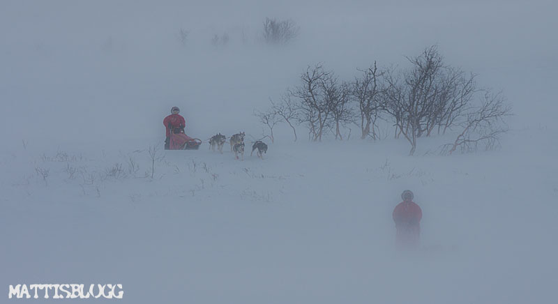 Snöstorm_lapplandsfjällen_5