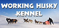 Working_husky_kennel
