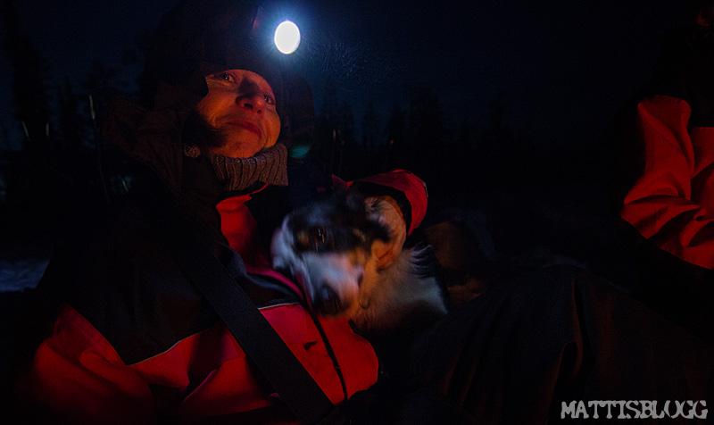 Korttur_hundspann_1