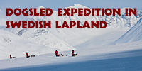 Dogsled_expedition_swedish_lapland