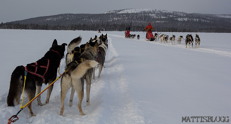 Crossing_lapland_3