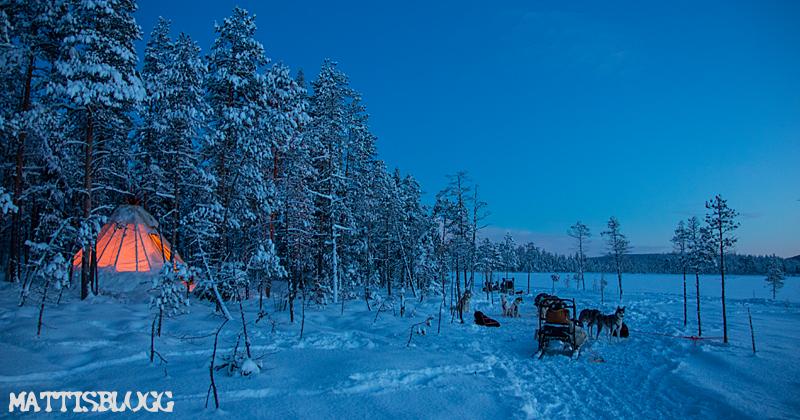 Vintersäsongen_2017-1