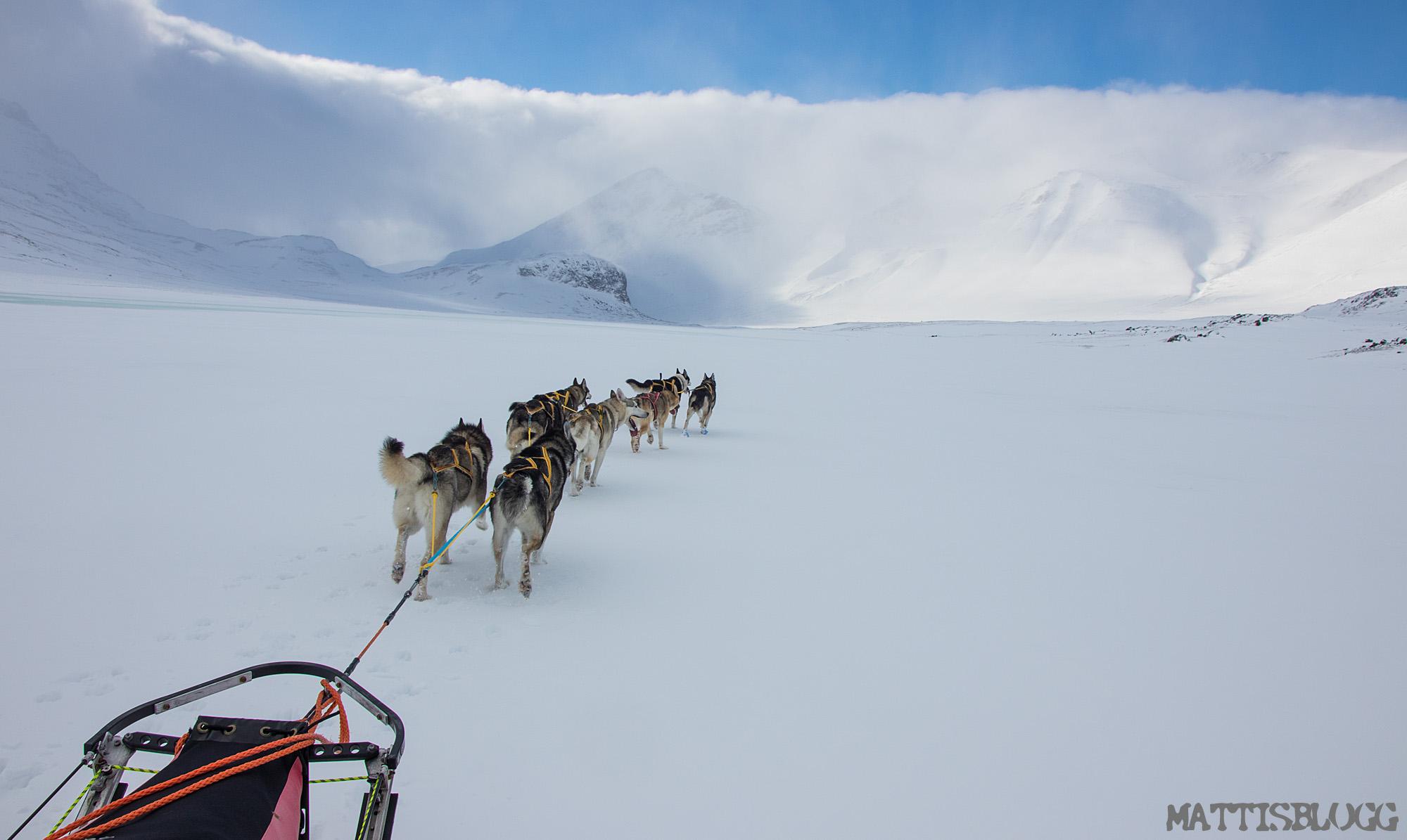Explore-sarek-hundspann-2