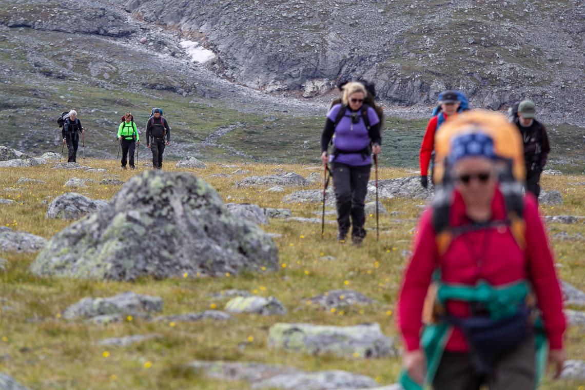 Fjällvandring-skierfe-2020-24